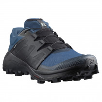 Salomon Wildcross GTX Men's Running Shoe