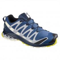 Salomon XA Pro 3D v8 GTX Men's Hiking Shoe